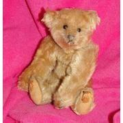 Antique Stieff teddy bear... 1906 Stieff 8 inch teddy bear.