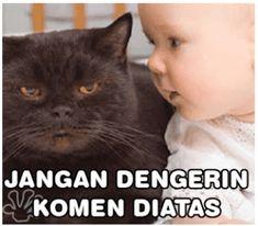 Koleksi Gambar dan foto lucu yang gokil bikin ketawa. 100 Memes, Meme Stickers, Orangutan, Pop Art, Humor, Funny, Animals, Doa, Pictures