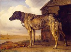 Paulus Potter (1625-1654) The WolfHound Oil on canvas