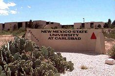 NEW MEXICO STATE UNIVERSITY.  Carlsbad, NM. For more information, go to www.ultimateuniversities.com