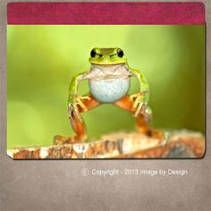 Sumo Frog - DyeTrans™ iPad® 2 or 3 Notebook Case