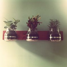 Vertical Garden by Marie Holdaway from our favorite coffee shop in SF