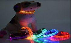 Nylons, Cool Cat Beds, Large Pet Beds, Large Dogs, Pet Barrier, Breakaway Cat Collars, Led Dog Collar, Pet Food Storage, Pet Bag