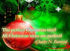 The perfect Christmas tree? All Christmas trees are perfect! ~ Charles N. Barnard