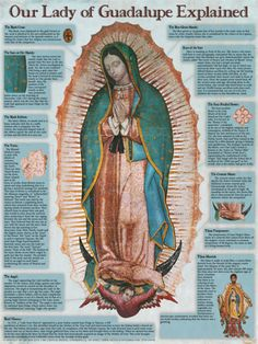 Our Lady of Guadalupe Explained Poster. Teach others about the story of Our Lady of Guadalupe, the deep symbolism of the image, why the artifact is miraculous, and much more!