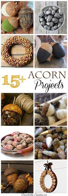 15+  Autumn Acorn Projects ~ Great Fall Crafts  #autumn #fall #acorns