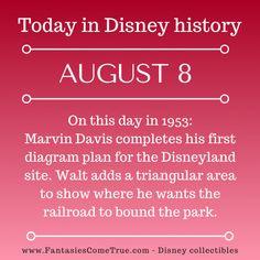 Disney Pins, Walt Disney, Disney Classics Collection, Disney Fun Facts, Witch Trials, Disney Traditions, The Rev, Alice In Wonderland, Disney Collectibles