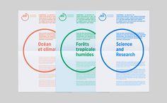Graphéine – Institut de Recherche pour leDéveloppement (IRD)