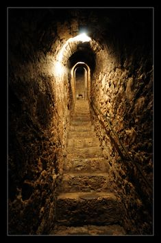 """Dracula Castle"" secret passageway in Transylvania, Romania Chateau Medieval, Medieval Castle, Catacombs, Stairway To Heaven, Abandoned Places, Stairways, Paths, Scenery, Images"