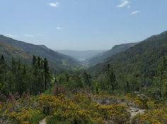 Guia Visitar o Parque Nacional Peneda Gerês - Visitar Portugal