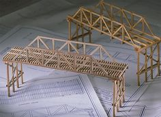 Balsa and Basswood Bridge Building Kits | Physics science experiments, teaching & education tools: Educational Innovations