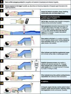 Tratamiento básico ante un ataque de anafilaxia.