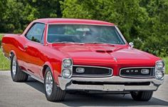 1966 Pontiac GTO ( Almost identical to my 1967 GTO, except my grill was silver and my car had a Black Vinyl top. Pontiac Gto, Chevrolet Corvette, Chevy, Gto Car, 1966 Gto, Pontiac Grand Prix, Mercedes, Us Cars, Belle Photo