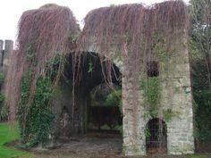 Archaeology Dublin - Simmonscourt Castle, Donnybrook, Dublin 4 Ireland Homes, Local History, Archaeology, Dublin, Old Photos, Castles, Architecture, World, Plants