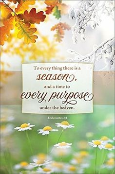 Back Product Description Bulletin Text To every thing there is a season, and a time to every purpose under the heaven. Isaiah 12, Lamentations 3 22 23, Psalm 100, Church Outreach, Church Bulletins, Sunday Worship, Ecclesiastes 3, Little Blessings, Special Words