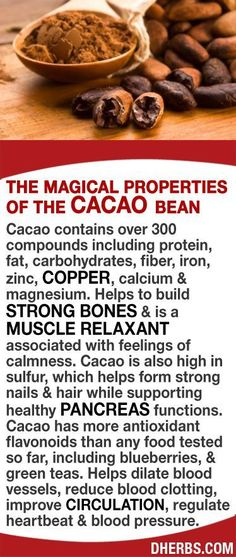 Benefits of the Cacao Bean More