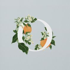 MONOGRAM IDEA!!!!!! Ohhh how I love this.... Would look awesome with peaches.
