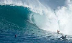 Surfing: Kelly Slater Wave Company (4 Pictures + Clip)