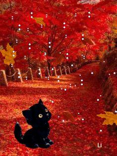 Красивая осень - анимация на телефон №1400072