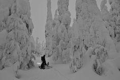 Remote Snowboarding Adventure