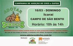 Bonde da Bardot: RJ: CAMPANHA DE ADOÇÃO DE ANIMAIS NO CAMPO DE SÃO ...