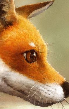 What does the fox say?  Tschoff tschoff tschoff tschoff tschoff tschoff tschoff  xddddddd