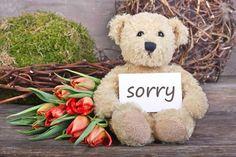 imágenes de disculpas