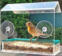 Window Bird Feeder House, Premium Crystal Clear Acrylic, ... https://www.amazon.com/dp/B01C6VZ8RK/ref=cm_sw_r_pi_dp_x_igl0xbMASZ044