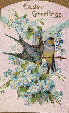 birds and light blue flowers