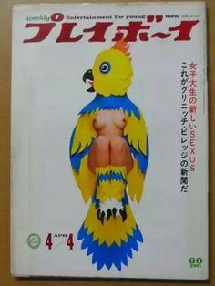 オウム Mad Movies, Sensual, Pin Up, Kawaii, Magazine, Graphic Design, Humor, Classic, Funny