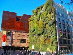 Amazing growing wall, Madrid, Spain, by Jeremiah Christopher, via Flickr.