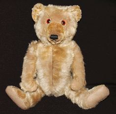 English Chiltern Bear
