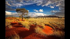 "Namibia, known as the ""Gem of Africa"", is a unique place for eco-tourists. Much of Namibia is as it was centuries ago. Due to this, it has a host of natural wonders and amazing places. Places To Travel, Travel Destinations, Places To Visit, Lonely Planet, Parc National, National Parks, Top Countries To Visit, Cities, Namibia"