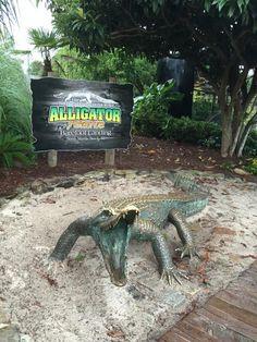 Alligator Adventure (North Myrtle Beach, SC): Address, Phone Number, Nature & Wildlife Area Reviews - TripAdvisor