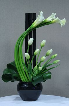 Black & white simplicity ( with some green of course ) makes this the perfect arrangement for St Patrick's Day ... http://diningroomdecor.tropicalhouseplants.net/