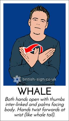 British Sign Language online course, free resources, games, information, and greeting cards. Sign Language Games, Sign Language Phrases, Sign Language Interpreter, Sign Language Alphabet, Learn Sign Language, English Sign Language, British Sign Language, Learn Bsl, Asl Signs