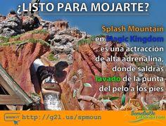 Splash Mountain atracción de Magic Kingdom en Walt Disney World te llevará por una travesía con una divertida historia altas velocidades caídas y mucha agua. Eso si saldrás muy lavado de esta atracción ==> http://g2l.us/spmoun