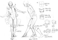 Learn To Draw People - The Female Body - Drawing On Demand Figure Drawing Tutorial, Male Figure Drawing, Figure Drawing Reference, Anatomy Reference, Art Reference Poses, Hand Reference, Body Sketches, Anatomy Sketches, Anatomy Drawing