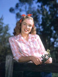 Marilyn Monroe.   Flickr - Photo Sharing!