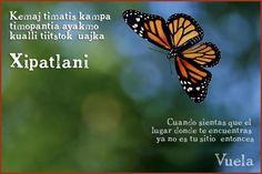 Resultado de imagen para frases de amor en nahuatl y su significado