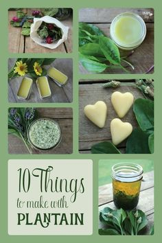 10 Things You Can Make With Plantain Leaves