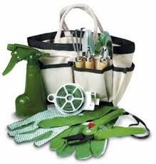 To care your plants you need some gardening tolos like gloves, a shovel, a rake, a bucket and a watering can.
