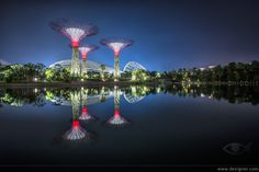 The Gardens of the Bay are an urban pard in Singapore. They already exist and you can visit right now. I