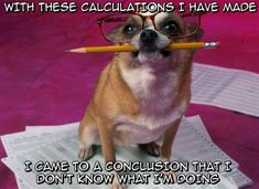Math in a nutshell ;P give me a literary analysis essay any day!