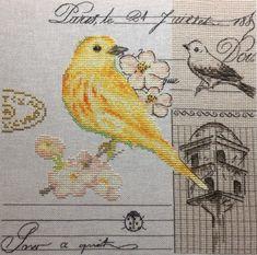 Yellow bird Cross Stitch Pattern. Design by Kseniya Adonyeva. Work and picture  by Anna Gridasova #crossstitch #pattern #spring
