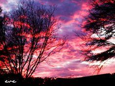 sunset 1.23.12 - Muscle Shoals AL