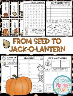 From Seed to Jack-o-lantern...Interactive and Paper Pencil! Word Work Activities, Grammar Activities, Autumn Activities, Poetry Anchor Chart, Anchor Charts, Pumpkin Facts, Writing Complete Sentences, Pumpkin Life Cycle, Nouns And Adjectives