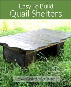 Get these easy to build Quail shelter plans made from wood and just a few tools. Quail living on the ground also like places to hide year round. Quail Pen, Quail Coop, Raising Quail, Raising Chickens, Backyard Chicken Coops, Chickens Backyard, Quail House, Chicken Cages, Chicken Feeders