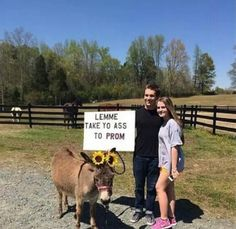 Prom proposals are on a whole new level these days (20 Photos)