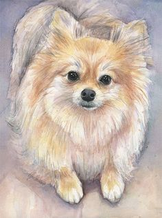 Pomeranian Watercolor Art Print, Animal Painting, Dog, Puppy, Pet Illustration